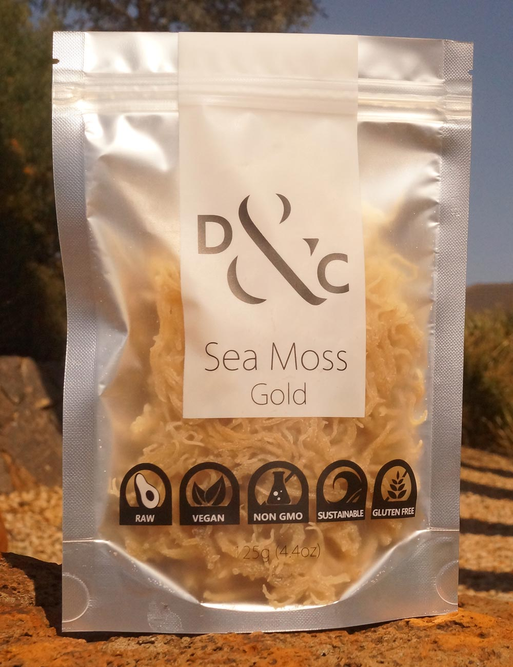 dried-sea-moss-gold-detox-and-cure-125g-bag-of-dry-sea-moss-outdoors